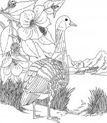 Barbie of Swan Lake Kids Coloring Pages 4